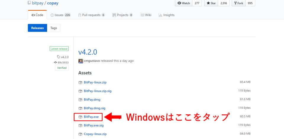 Windowsの場合、「Bitpay.exe」を選択し、インストールを開始